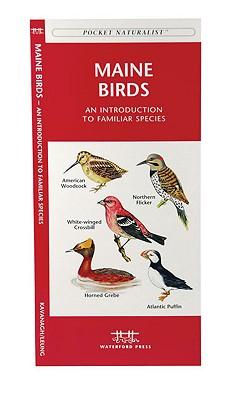 Maine Birds By Kavanagh, James/ Leung, Raymond